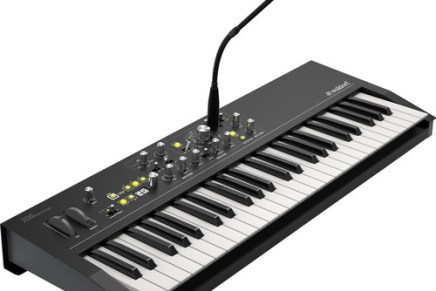 leaked? the new Waldorf STVC string synthesizer and vocoder