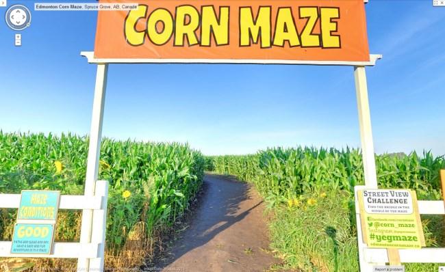 street-view-corn-maze