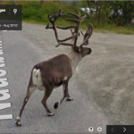 Christmas sightseeing in Google Earth