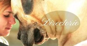 directorio animal