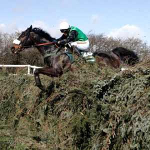 Grand National 2012 Preview Tips