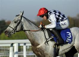 Simonsig - going for a 2nd Cheltenham Festival win