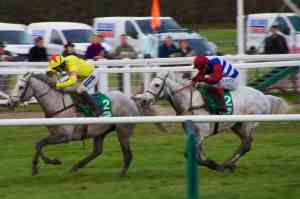 Paddy Power Gold Cup Preview