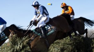 Teaforthree for Grand National glory?