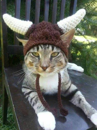Kitty Viking Helmet Brown- Geek Decor