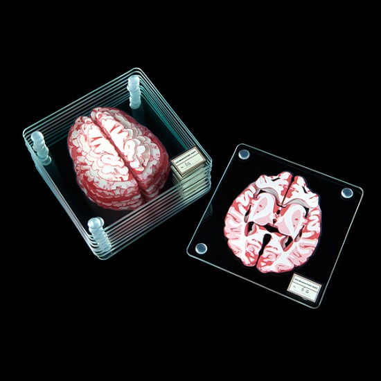 Brain Specimen Coasters Detailed - Geek Decor