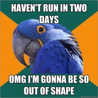 Runner Bird Fitness Meme