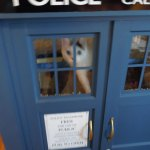 Tardis Cat Fort by astromark