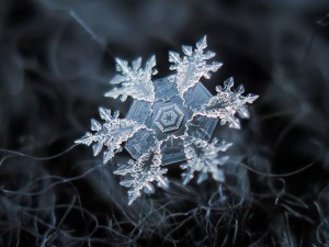 Amazingly BEAUTIFUL Macro Photos of Snowflakes [Pics]