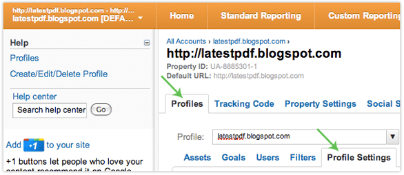 Google Analytics Profile Settings