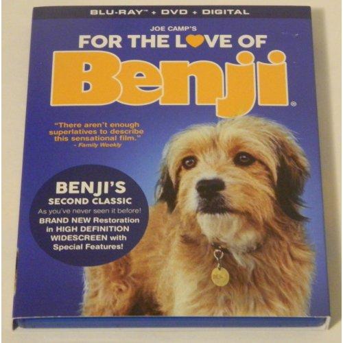 Medium Crop Of Benji Dog Breed