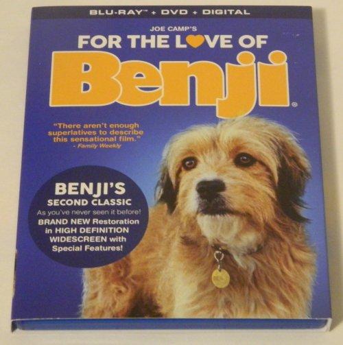 Medium Of Benji Dog Breed