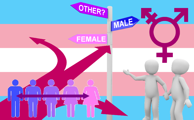 Self-Identified Gender revolution, a social or surgical trans & non-binary construct?