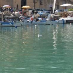 barche Castel del Golfo