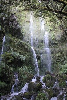 cascata levada walk madeira portogallo