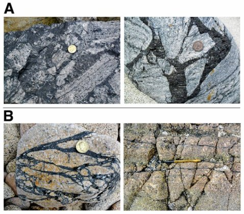 These pseudotachylites -- fine grained rocks -- are from the British Isles. Credit: Image courtesy of Yale University