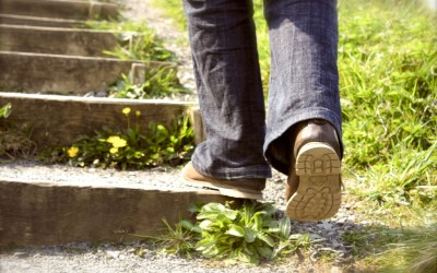 Sixteen Steps Every Educator Should Take in2016