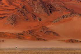 Whilst driving through Sossusvlei it amazed me how these magnificent animals survive and live in the desert. I was lucky to capture this image of an oryx in front of a big red dune as backdrop. My focus was to capture the scale of the Namib desert. - Basson van Zyl, Langebaan
