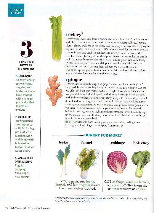 Vegetarian Times Article 2