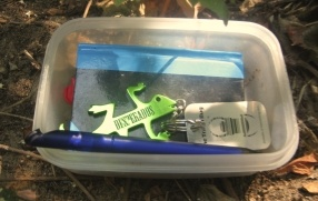 A traditional cache containing a travelbug