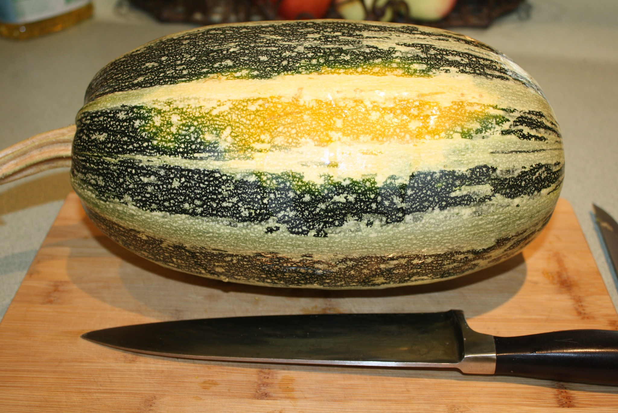 Fullsize Of When To Pick Spaghetti Squash