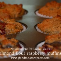 nourishment for living well's almond flour raspberry muffins