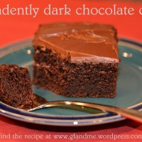 decadently dark chocolate cake ... gluten free but NOT cocoa free :)