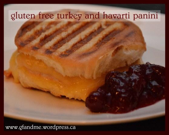 gluten free turkey and havarti panini