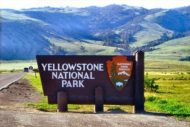 Yellowstone National Park road trip from Chicago