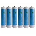 Bomboletta CO2 Usa E Getta Per Refrigeratori Acqua Gasata 600gr