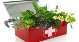 herbal-first-aid-kit-666x399