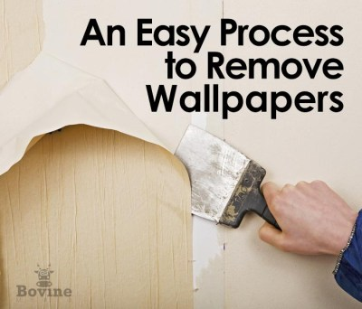 An easy process to remove wallpaper