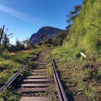 Sri Lanka Highlights: Hiking Ella Rock