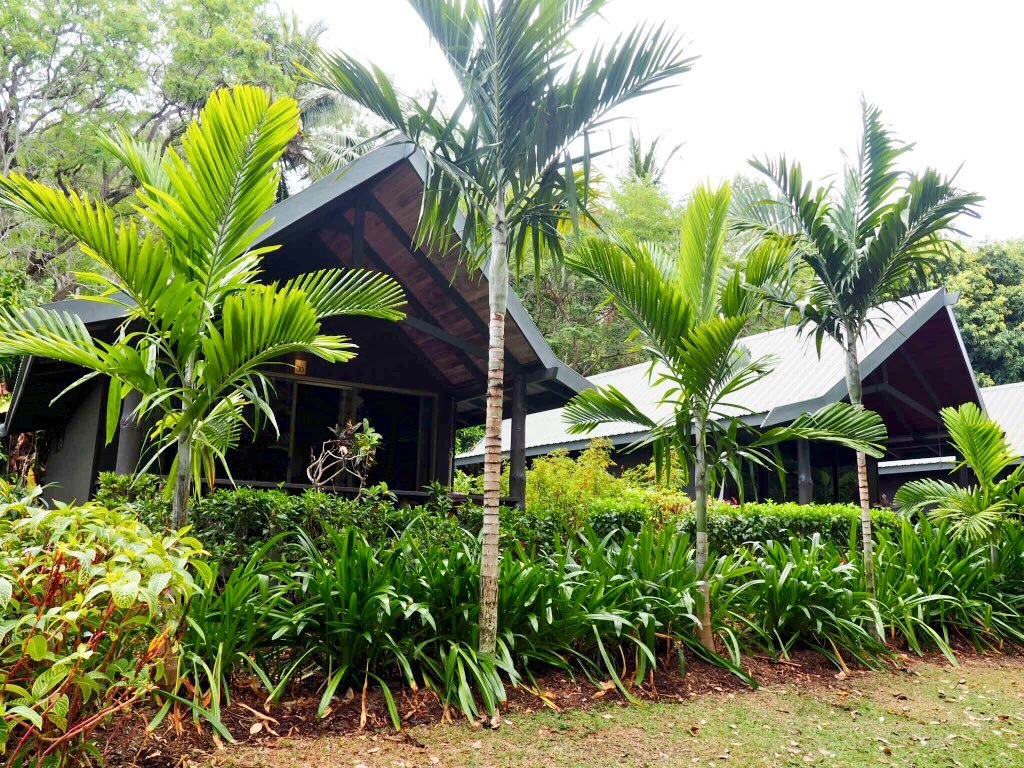 Jungle chic Palm Bungalows