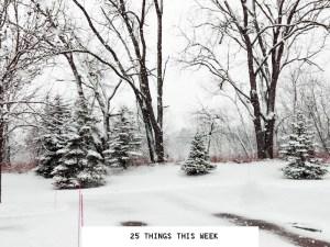 25 Things This Week