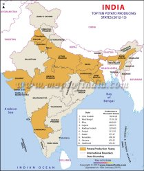 Top Ten Potato Producing States in IndiaCredit: Maps of India