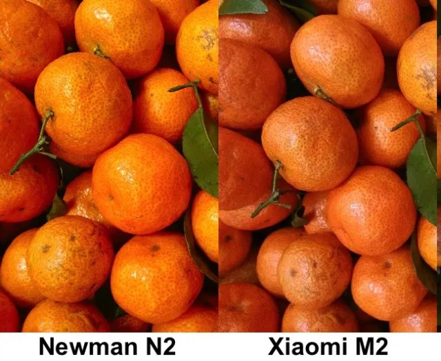 xiaomi m2 vs newman n2 close up photos Xiaomi M2 Vs Newman N2: Camera Shootout