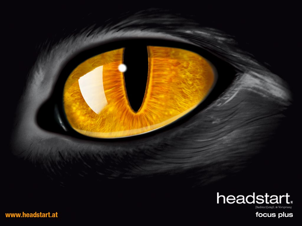 headstart Wallpaper 1024x768