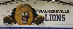 Walkersville High School Fall Sports Programs Available