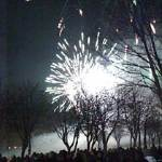 fireworks2011sml3771w-9231