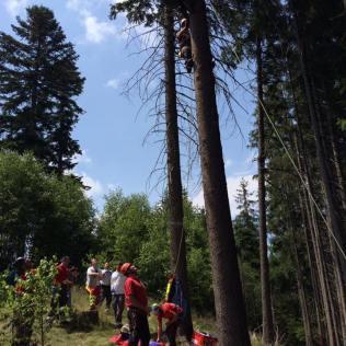 Rettung naht. Inszeniert wird die Bergung eines im Baum gelandeten Gleitschirmfliegers, der dort schon 2 Stunden hängt und Verletzungen hat... Zum Glück gehen Baumlandungen meist glimpflich aus.