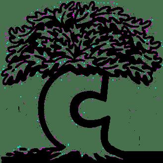 Meet Sunday S Chronicle Book Fair Authors Glens Falls Chronicle