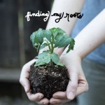 finding my roots
