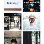 portfolio wind and word identity