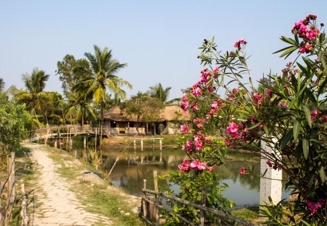 Entering the Eco Village