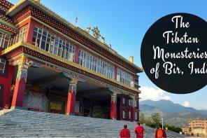 The Tibetan Monasteries of Bir Billing, India (5)