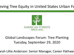 Achieving Tree Equity in United States Urban Forests