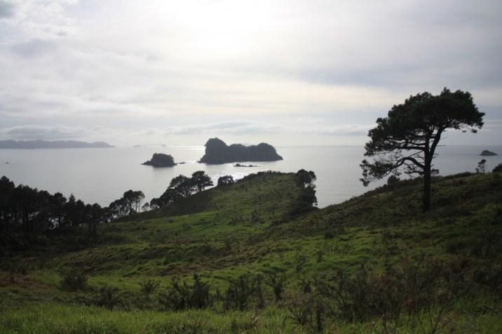 thedral Cove - Coromandel