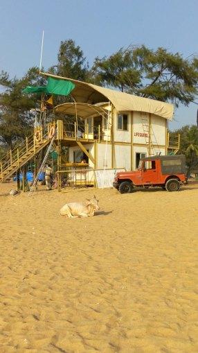 Unterwegs in Goa Reisetipps27