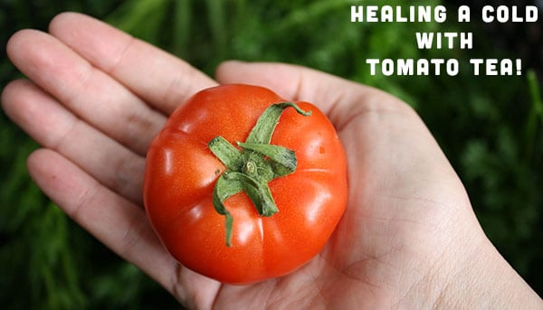 Natural Remedies Tomato Tea for Cold and Flu